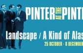 PINTER AT THE PINTER - LANDSCAP/A KIND OF ALASKA Play