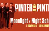PINTER AT THE PINTER-MOONLIGHT/NIGHT SCHOOL Play