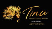 TINA-THE TINA TURNER MUSICAL